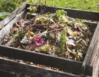 https://13commeune.fr/app/uploads/2015/03/compostage.1-321x250.jpg