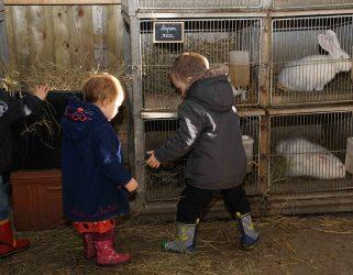 https://13commeune.fr/app/uploads/2015/07/bebes-fermiers-pourleweb-321x250.jpg