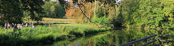 Visite guidée nature au parc du château de Menucourt