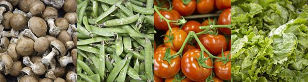 gros plans sur des légumes vendus dans le magasin C'TOUT BIO