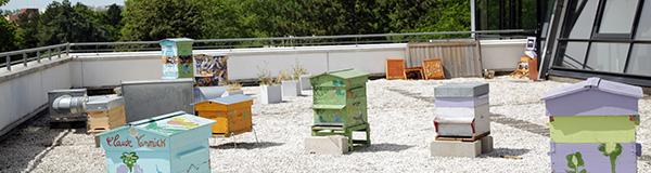 ruches, ESSEC, abeilles, développement durable, apiculture