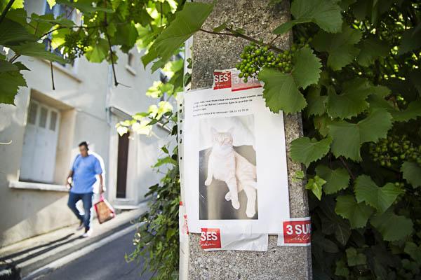 rue du chateau Berger