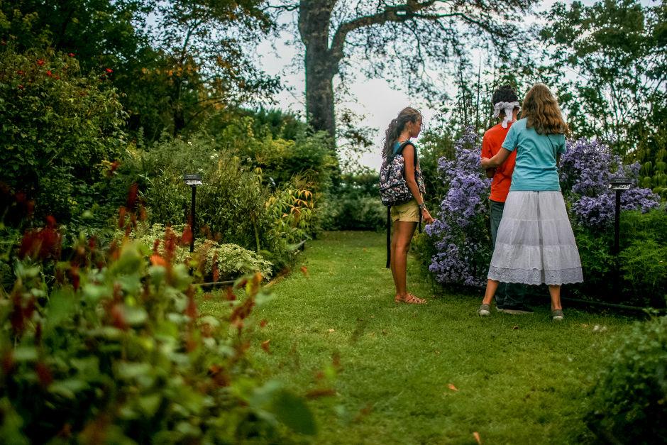 Jardin des 5 sens à Pontoise