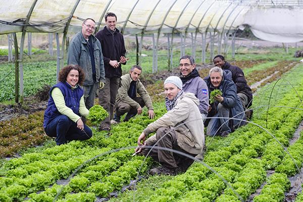 activité agricole, agriculture, maraîchage, plaine de Cergy, Cergy-Pontoise