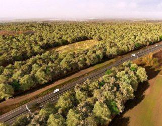 https://13commeune.fr/wp-content/uploads/2019/12/Perspective-de-la-future-forêt-de-Pierrelaye-©-SMAPP-321x250.jpg