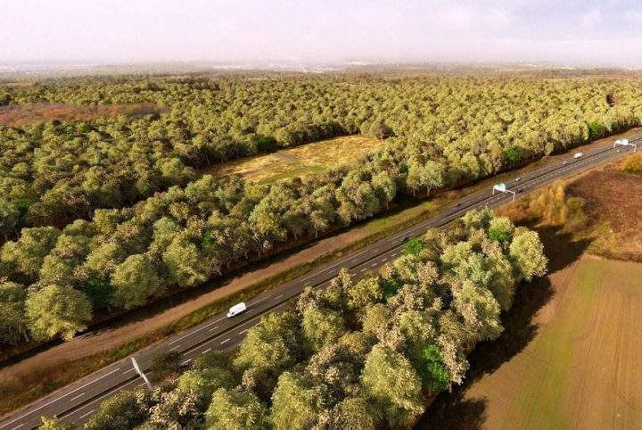 Perspective de la future forêt de Pierrelaye © SMAPP