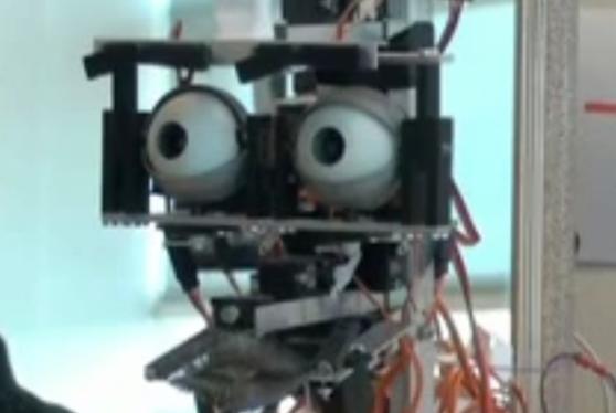 tête du robot servant à la simulation
