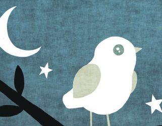 Accéder à La cabane aux oiseaux