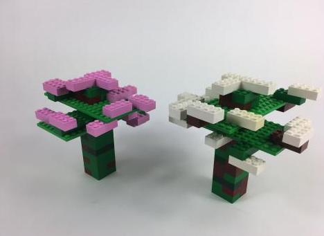 Cherry-blossum-tree©playwell