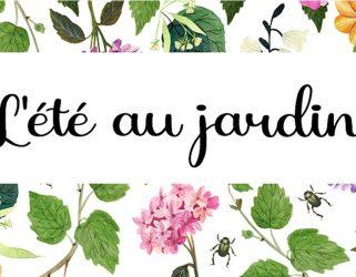 https://13commeune.fr/app/uploads/2021/06/MDA_-ete-au-jardin-321x250.jpg